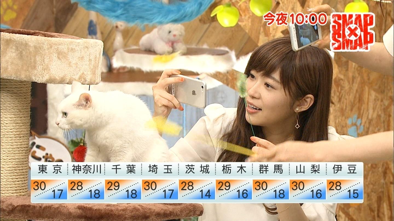 ねこ©2ch.netYouTube動画>1本 ->画像>3196枚