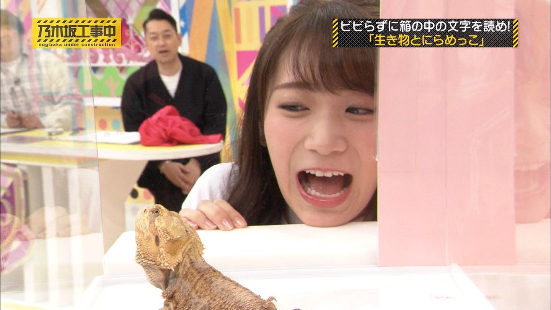 【速報】日村勇紀さん「秋元可愛ええなぁ」と本音を吐露。