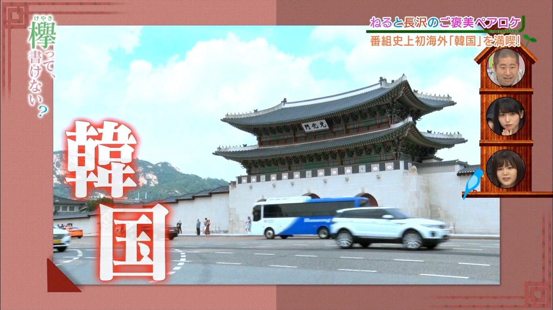 新大久保で韓流ブームだってさ YouTube動画>1本 ->画像>32枚